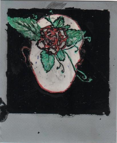 tête-fleurs - 2014 - r.n